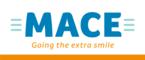 Careers - Jobs - MACE Ireland