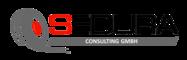 Karriere bei SEDURA Consulting - Stellenangebote