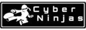 Application Security Intern / Software Development Intern - Cyber Ninjas