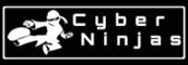 Careers - Cyber Ninjas